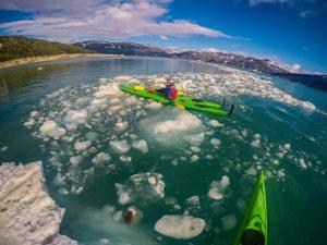 kayaking around floating ice at svartisen glacier